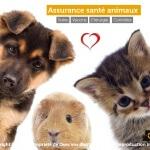 Souscription d'une mutuelle pour animaux