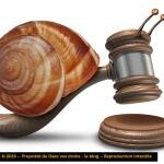 Les lenteurs de la justice française